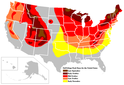 Fall Color Map Canada butterfly wings tattoo: peak fall foliage map canada