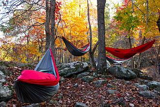 Hammock camping - Three Hammock Campers in various positions.