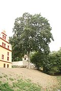 Famous tree Tilia Cordata near Třebíč Castle in Třebíč, Třebíč District.jpg