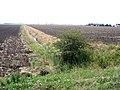 Farmland, Neslam Fen, Pointon, Lincs - geograph.org.uk - 215161.jpg