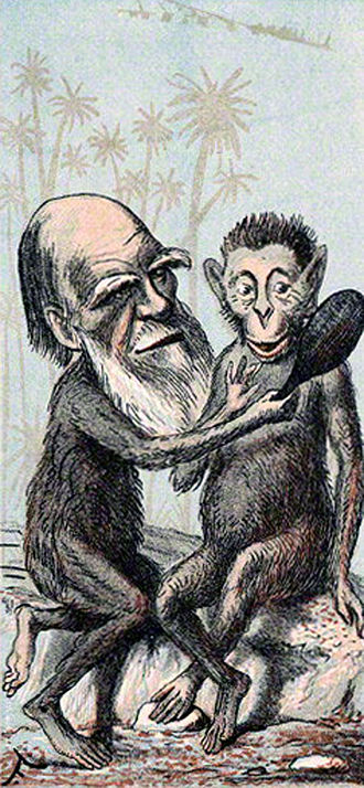 Caricatures of Charles Darwin and his evolutionary theory in 19th-century England - Prof. Darwin in Figaros London Sketch Book of Celebrities, 18 February 1874.