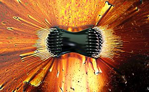 Ferrofluid - Ferrofluid is the oily substance collecting at the poles of the magnet which is underneath the white dish.