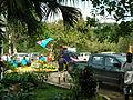 Fiji parade float (7749839314) (2).jpg