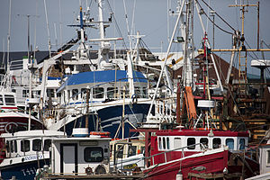 Fishing Fleet - Howth.jpg