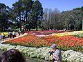 Floriade2.jpg