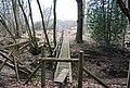 Footbridge in Brown's Wood - geograph.org.uk - 1760399.jpg