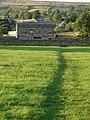 Footpath south of Askrigg - geograph.org.uk - 399295.jpg