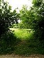 Footpath to Liston Gardens (geograph 4035958).jpg
