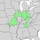 Fraxinus quadrangulata range map 3.png