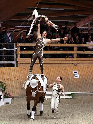 Equestrian vaulting - Team Freestyle