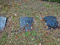 Friedhof Wannsee (Lind) Werner von Braumüller.jpg