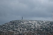 Frost on Mt Greylock, from Notch Rd, Adams MA.jpg