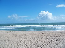Ft Pierce FL Avalon SP beach01.jpg