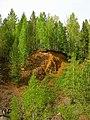 G. Nizhnyaya Tura, Sverdlovskaya oblast' Russia - panoramio - Oleg Seliverstov (2).jpg