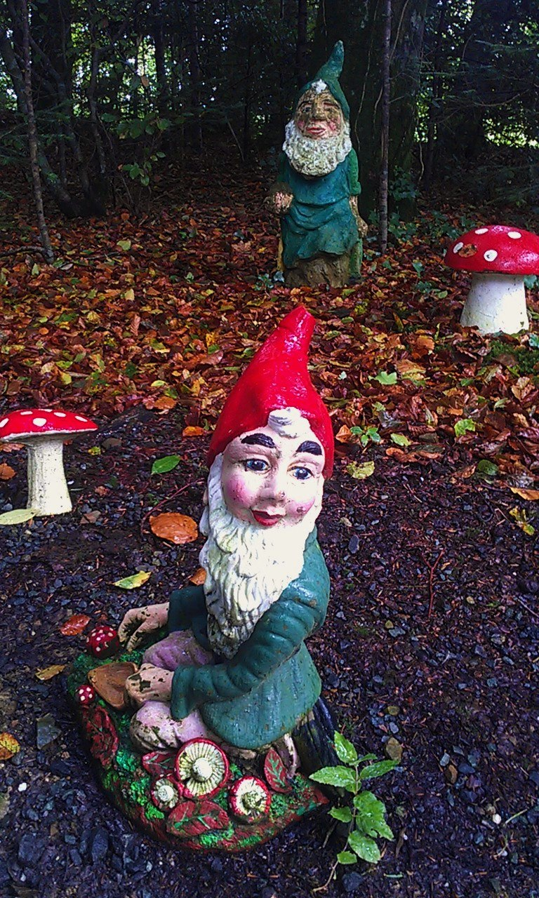 Garden Gnome at Gnome Reserve
