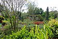 Garden view - Mounts Botanical Garden - Palm Beach County, Florida - DSC03877.jpg