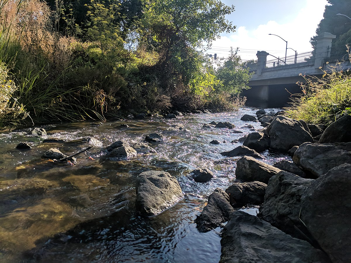 san mateo creek san francisco bay area wikipedia