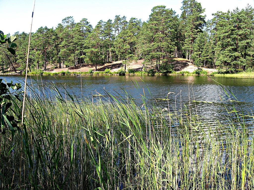 Paysage de forêts de pins et de lacs dans le Parc National de Gauja en Lettonie - Photo de alinco_fan