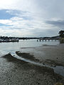 Georges River, from Clare Street, Sylvania, New South Wales (2010-07-21) 04.jpg