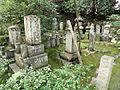 Giō-ji - Kyoto - DSC06289.JPG