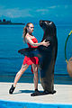 Girl with Fur Seal in Anapa dolphinarium (without correction).jpg
