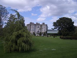 English: Glin Castle from the gardens, with th...