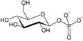 Glucose-1-phosphate.PNG