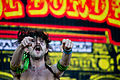 Gogol Bordello - Rock in Rio Madrid 2012 - 24.jpg