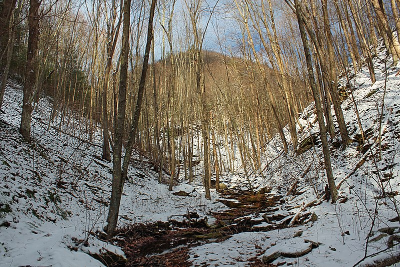 File:Golden Eagle Trail (Full Hike) (20) (11141905134).jpg