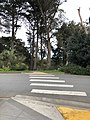 Golden Gate Park 1 2019-02-28.jpg