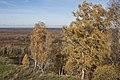 Gorokhovetsky District, Vladimir Oblast, Russia - panoramio (2).jpg