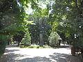Grădina Alei 8.JPG