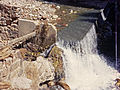 Grand Canyon Flood of 1966 Bright Angel Canyon 0334 - Flickr - Grand Canyon NPS.jpg