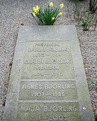 Grave of swedish professor Carl Björling.jpg