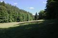 Grebenau Grebenau NR 165502 Schwarzenbachsgrund Meadow b.png