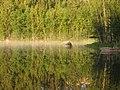 Green reflection - panoramio.jpg