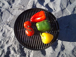 Grilling on the Beach in February2
