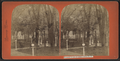 Grounds in rear of Grand Union Hotel, from Robert N. Dennis collection of stereoscopic views.png