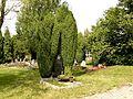 H)Staré Sedlo Pomník na hřbitově.JPG