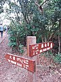 HK 西貢 Sai Kung District hiking Ma On Shan Country Park Pak Sha Wan Sam Sing Wan Pak Ma Tsui February 2021 SSG 06.jpg