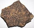 Halite salt casts (Carrara Formation, Cambrian) 2.jpg
