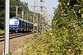 Halte Fontainebleau - Forêt IMG 8542.jpg
