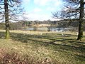 Hardwick Park - Great Pond View - geograph.org.uk - 720706.jpg