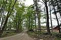 HarrisvilleNH WellscroftFarm.jpg