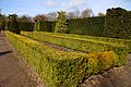 Hedges at Bridgemere Garden World - geograph.org.uk - 1773967.jpg