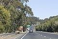 Helensburgh NSW 2508, Australia - panoramio (37).jpg