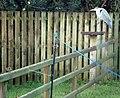 Heron in Drumrooske - geograph.org.uk - 1071639.jpg