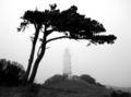 Hiddensee Leuchtturm Dornbusch.jpg