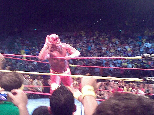 Hogan playing the crowd.jpg
