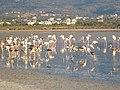 Holidays Greece - panoramio (406).jpg